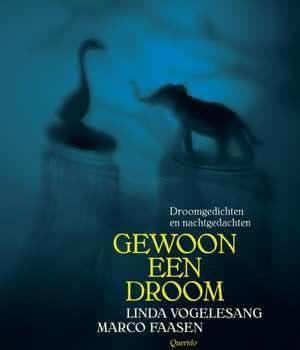 gewoon-een-droom-linda-vogelesang-boek-cover-9789045120799