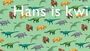 Hans is kwijt os09_.indd