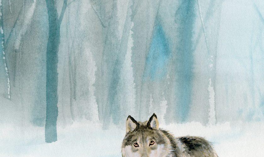 silas en de wolf (2)