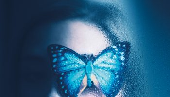 Blauwtje (2)